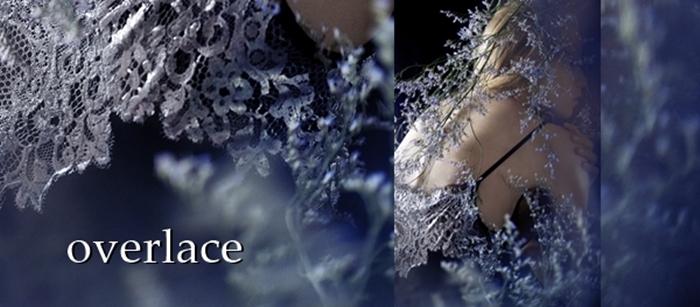 overlace,lace blouse,箔押しレース